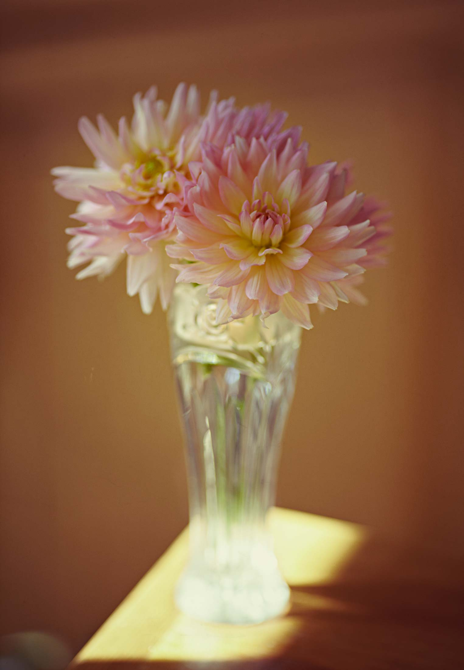 vase-with-dahlias2.jpg