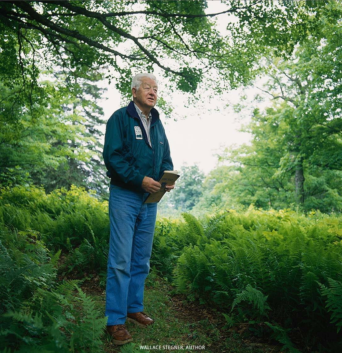 wallace-stegner-american-author-in-vermont.jpg